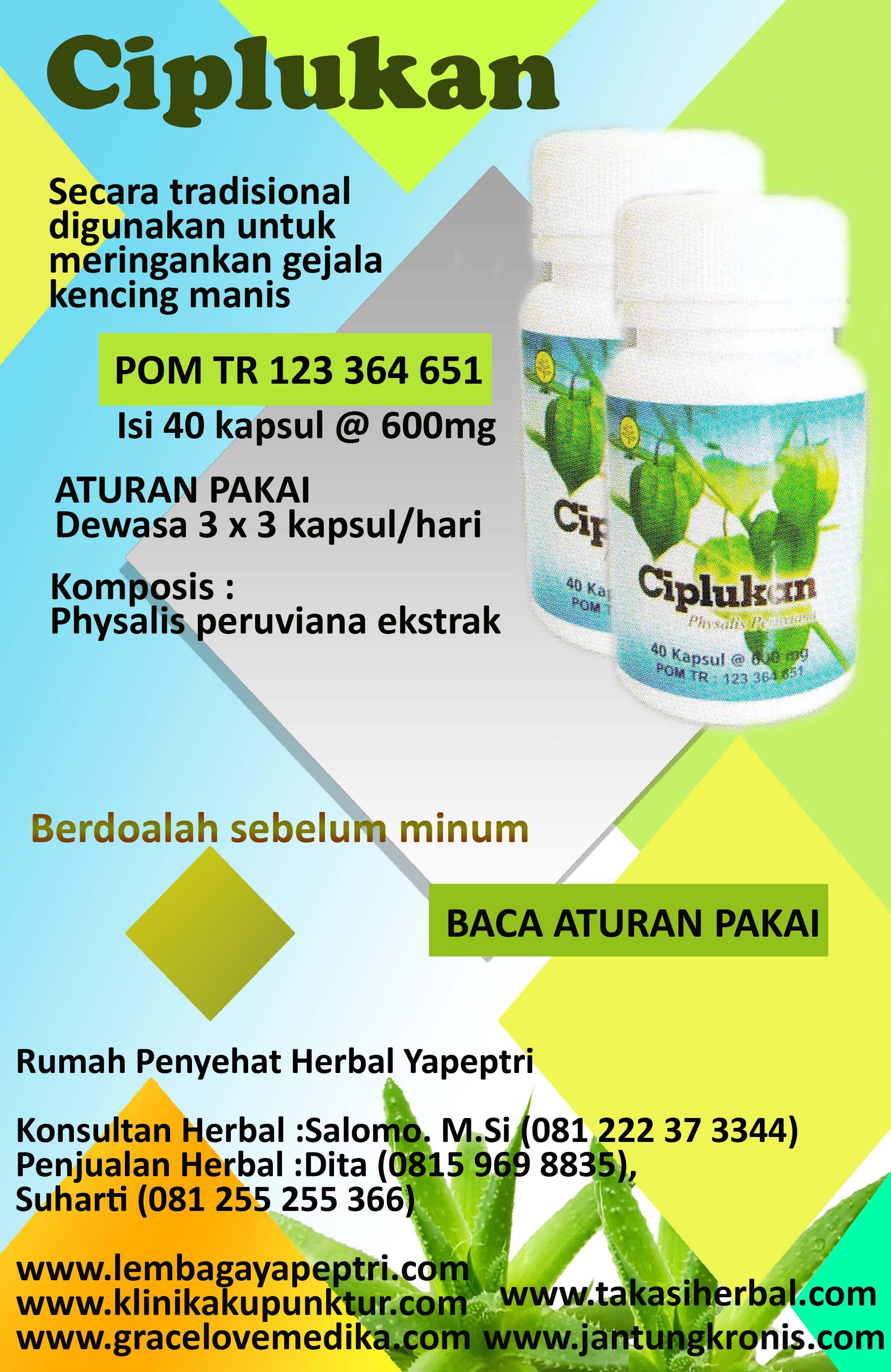 HERBAL CIPLUKAN Digunakan untuk meringankan gejala kencing manis